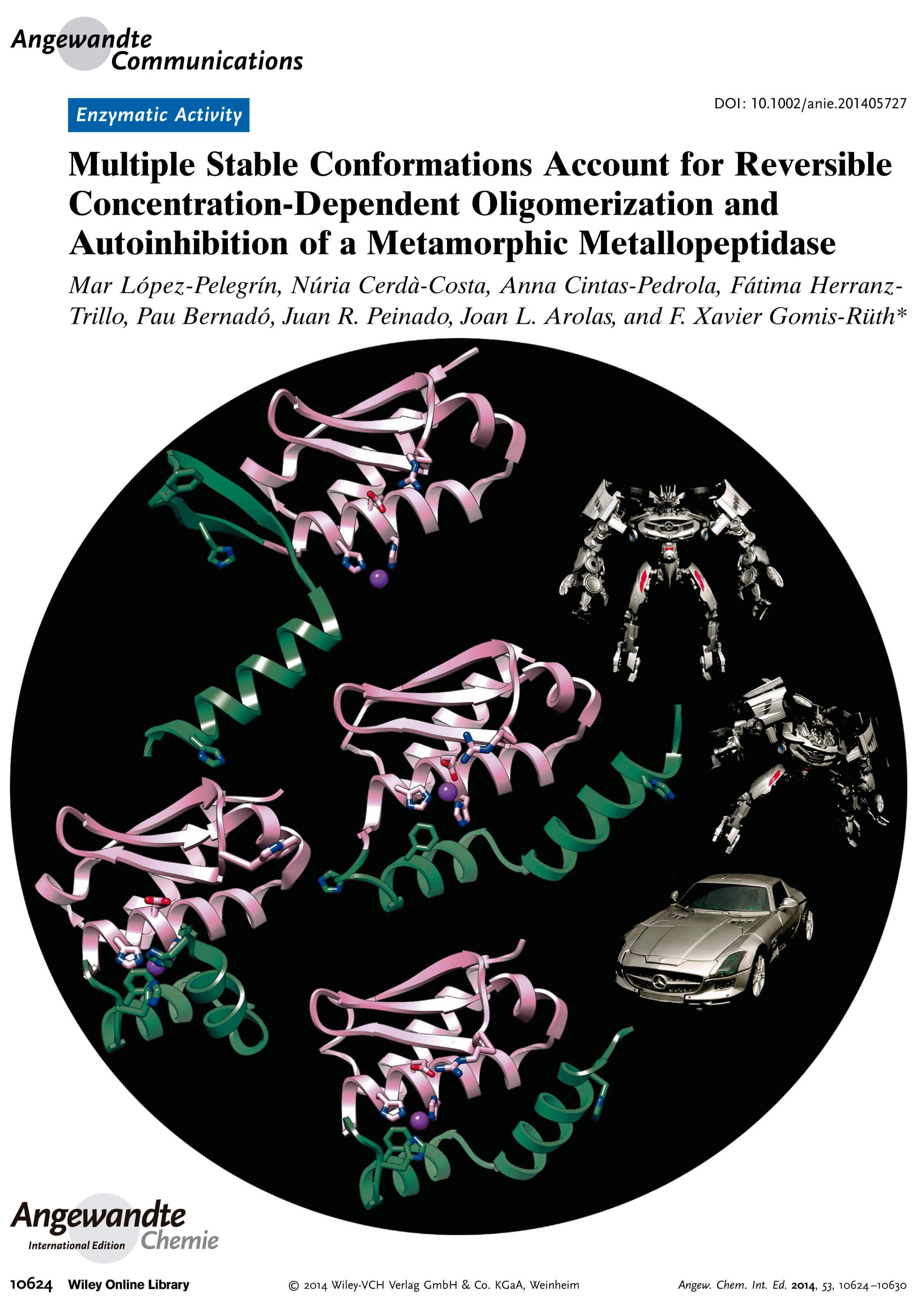 Methanococcus jannaschiiselecase