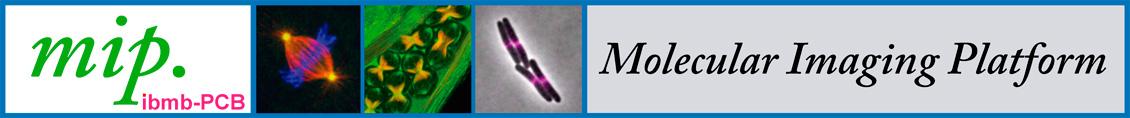 Molecular Imaging Platform IBMB