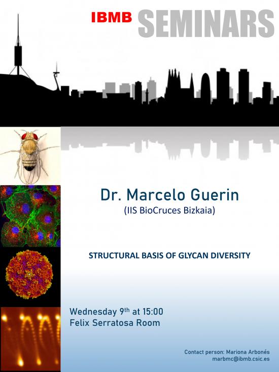 Seminario Dr Marcelo Guerin